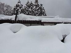 雪没2.jpg